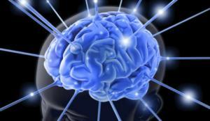 Εντοπίστηκε περιοχή στον εγκέφαλο που «νιώθει» ότι κακό πρόκειται να συμβεί